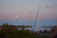 Nassa-måne